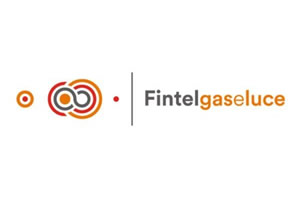 https://www.fintelgaseluce.it/
