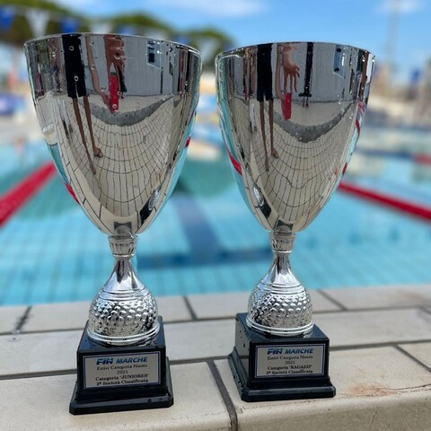 Ammissione ai campionati italiani di categoria estivi